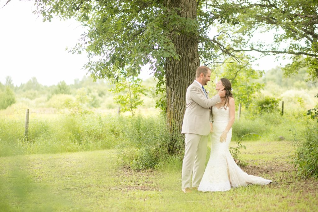 couple under a tree in a field for their intimate childhood home wedding in Wisconsin