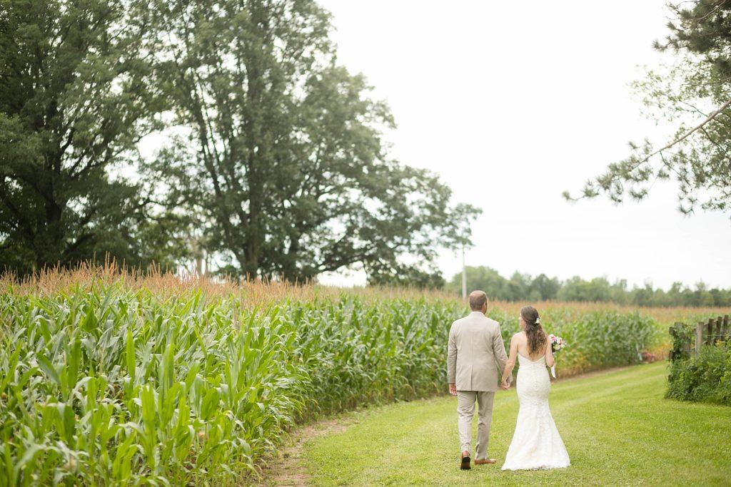 rural Wisconsin wedding couple walking through a corn field